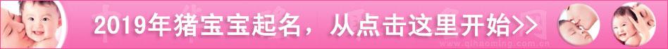 2010虎宝宝起名